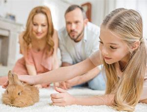 注意力咨询:培养孩子学习的专注力父母要怎么做?